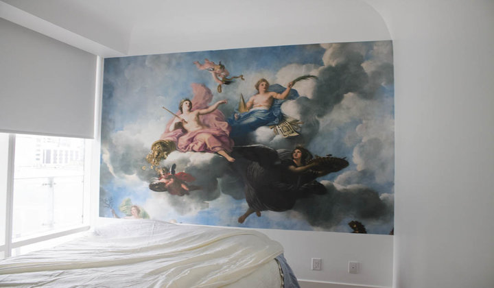 Custom Wall Murals