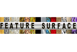 Feature Surface. Logo
